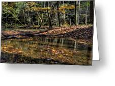 Autumn Beauty Scene Greeting Card