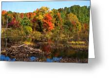 Autumn Beaver Pond Reflections Greeting Card