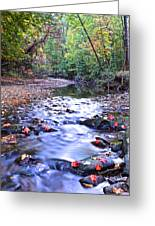 Autumn Begins Greeting Card by Frozen in Time Fine Art Photography