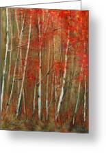 Autumn Birch Greeting Card