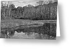 Autumn Black And White Greeting Card