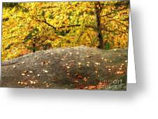 Autumn Boulder And Leaves Greeting Card
