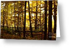 Autumn Bridge I Greeting Card