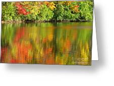 Autumn Brilliance Greeting Card