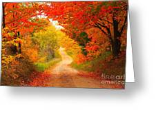 Autumn Cameo Road Greeting Card
