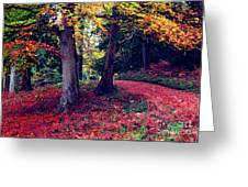 Autumn Carpet In The Enchanted Wood Greeting Card