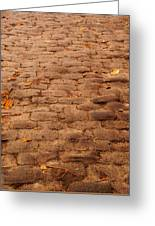 Autumn Cobble Stone Road II Greeting Card