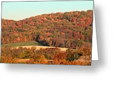 Autumn Color On Rolling Hills Greeting Card