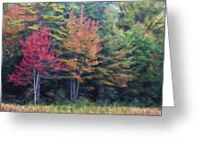 Autumn Color Painterly Effect Greeting Card