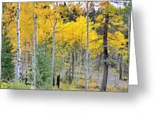 Autumn Colorado-1 Greeting Card