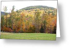 Autumn Colors Greeting Card