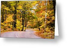 Autumn Colors - Colorful Fall Leaves Wisconsin - II Greeting Card