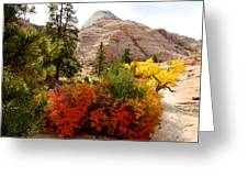 Autumn Colors In Zion's Highlands-ut Greeting Card