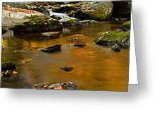 Autumn Colors On Little River Greeting Card