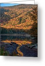 Autumn Colors Reflected In Stream Greeting Card