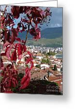 Autumn Colour - Ohrid - Macedonia Greeting Card