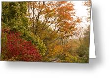 Autumn Comes To The Burbs Greeting Card