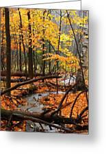 Autumn Creek In The Rain Greeting Card