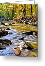 Autumn Creek Greeting Card