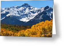 Autumn Curtains Greeting Card