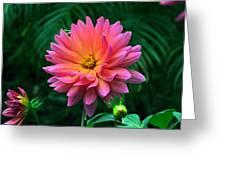 Autumn Dahlias And Palms Greeting Card
