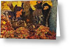 Autumn Greeting Card by Denise Mazzocco