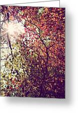 Autumn Dresses In Flame And Gold Greeting Card