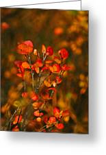 Autumn Emblem Greeting Card