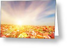 Autumn Fall Landscape Greeting Card