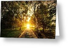Autumn Fall Park Greeting Card by Michal Bednarek