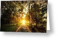 Autumn Fall Park Greeting Card