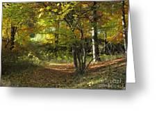 Autumn Feeling Greeting Card