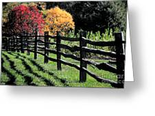 Autumn Fence And Shadows Greeting Card