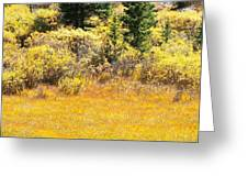 Autumn Fire In The Grass Greeting Card