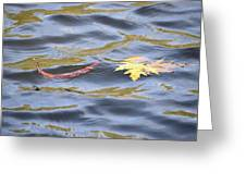 Autumn Floats Away Greeting Card