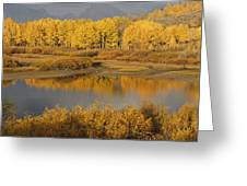 Autumn Foliage Surrounds A Pool In The Greeting Card