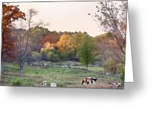 Autumn Forage Before Winter's Arrival Greeting Card