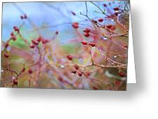 Autumn Fruits Greeting Card
