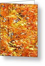 Autumn Fury Greeting Card