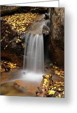 Autumn Gold And Waterfall Greeting Card by Leland D Howard