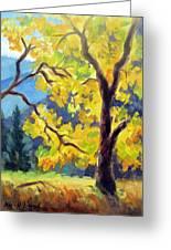 Autumn Gold Yosemite Valley Greeting Card
