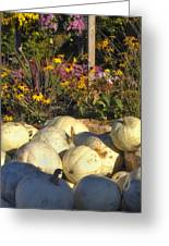 Autumn Gourds Greeting Card