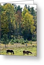 Autumn Grazing Greeting Card