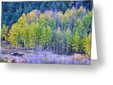 Autumn Grazing Horses Bonanza Greeting Card by James BO  Insogna