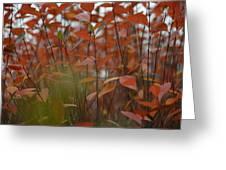Autumn Harmony 3 Greeting Card