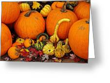 Autumn Harvest 5 Greeting Card