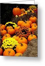 Autumn Harvest 6 Greeting Card