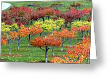 Autumn Hillside Orchard Greeting Card