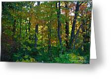 Autumn Hilltop  Greeting Card