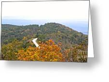 Autumn Horizon Greeting Card